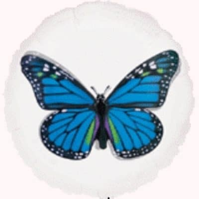 Blue Butterfly Magicolour Balloon